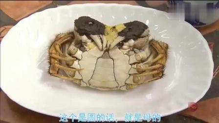 蔡澜: 这里个头最大的阳澄湖大闸蟹, 480元一斤
