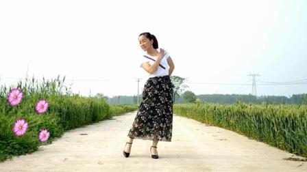 点击观看《玫香广场舞 今生陪你走 2018最新广场舞》