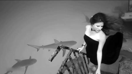 美女模特不借助任何设备潜入水下 在鲨鱼群中淡