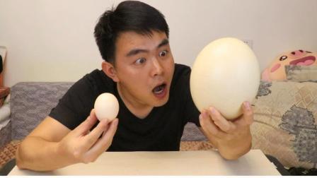 100元一個蛋, 吃完這個鴕鳥蛋, 三個月內我都不想再吃雞蛋了