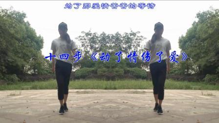 14步鬼步舞 动了情伤了爱 好听的情歌 新生代广场舞的美女棒棒哒