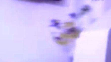 投影仪二次元影像仪