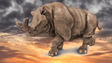 《山海经》神兽兕, 可能是3000万年前的雷兽