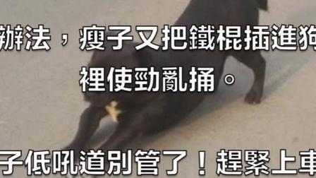 流浪狗被打断了腿, 他好心救治, 最后救了儿子一条命!