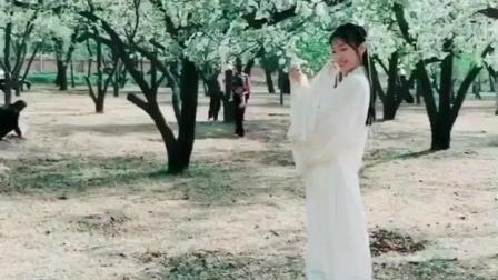白裙仙气古装美女, 景色美人更美, 看呆了