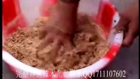 养殖蚯蚓,牛粪养殖蚯蚓视频