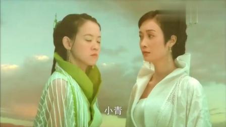 法海不愿放许仙, 白蛇和小青联手水漫金山寺!