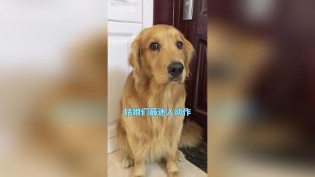 美拍视频: #宠物##搞笑##精选#