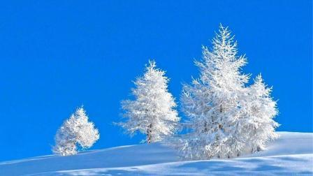 一首伤感情歌《寂寞的冬天》好听极了
