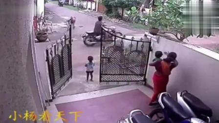 小女孩在门口玩耍, 一头牛忽然走了过来, 结果真