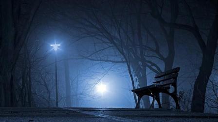 望海高歌一首伤感情歌《 寂寞的夜忧伤的歌》好