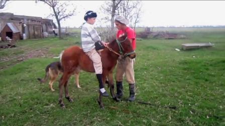 国外熊孩子在草坪上学习骑马, 看来骑马还不是一