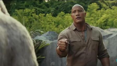 狂暴巨兽: 强森新电影, 银背大猩猩了解一下