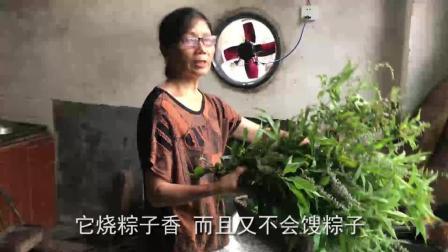 农村婆婆做早餐粽  第一次见放野草进去煮的  这味道闻着太香了