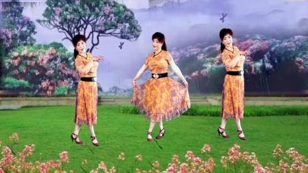 吕芳广场舞 海鸥飞 好听好看好学正背面及舞蹈分解动作视频教学