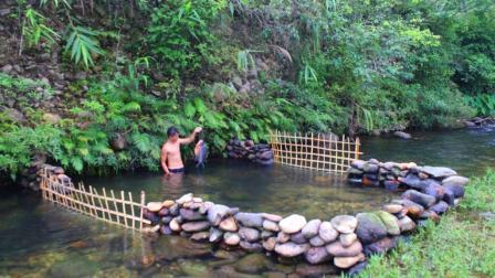 菩提小哥小溪起来,他把鲳鱼围养鱼放养视频,这功农村小溪图片