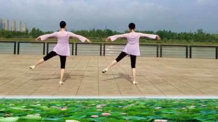 点击观看《中老年广场舞教学分解视频 一朵莲 花与影广场舞正背面示范 口令动作讲解》