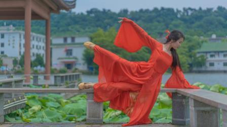 大鱼海棠的凄美爱情故事,看古典舞如何深层次的表演