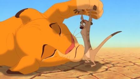 猪和猫鼬见到狮子居然不害怕,还想留下来,胆子真肥