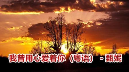 粤语怀旧歌曲: 我曾用心爱着你 - 甄妮相关的图片