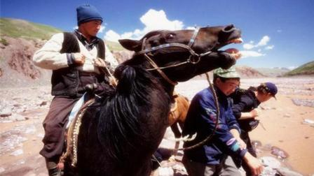 千年前, 此民族帮中国打败外国人, 千年后, 此族后人守护中国边疆