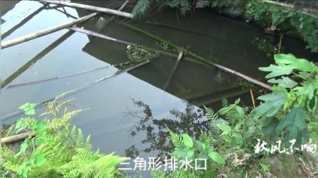 视频的小鱼塘方便,想吃就捉,太养鱼了黄瓜v视频农村图片