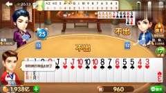棋牌游戏 地主明牌后 仍旧必输的牌 碰到个猪队友 气的我把手机扔了