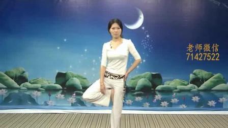王媛瑜伽视频教程40集 瑜伽培训教练