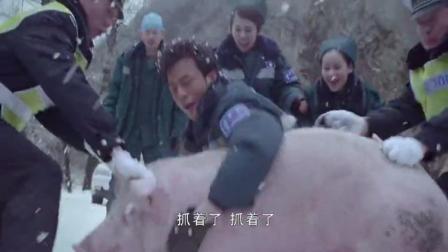 交警和医生一起出动 帮大爷抓猪 一群人费了半天劲终于抓住了