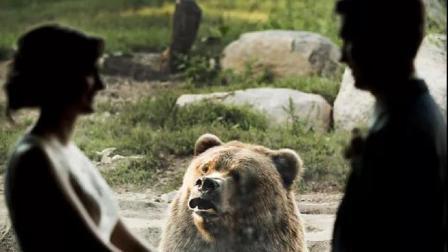一对新人在动物园结婚 现场的熊却受不了了