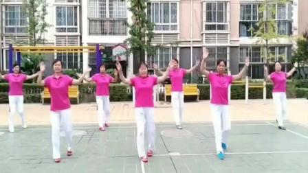 玫香广场舞 不白活一回 跳出了我们步入老年人的心声了!