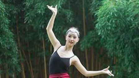 点击观看《单色舞蹈 婀娜多姿的傣族舞真的很亮眼了》