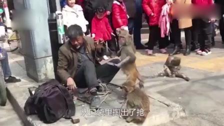 河南老师傅耍猴, 猴子突然拿刀攻击, 无奈之下师