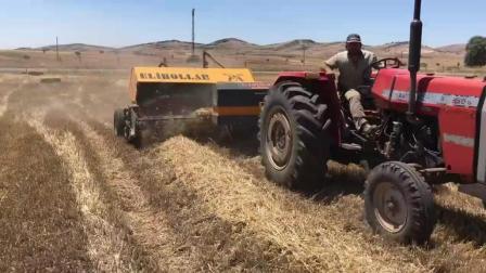 干草从收割到打捆一气呵成, 国外的机械化农业确