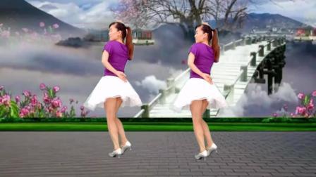 点击观看《32步广场舞 天长地久 简单易学 玫香广场舞》