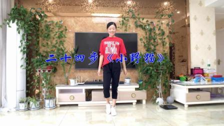 点击观看《新生代广场舞 简单24步广场舞 DJ小野猫 鬼步舞视频哟》