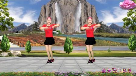 蓝天云广场舞 十二年 动作简单广场舞视频教学分解 附正背面演示 就是很简单的舞蹈