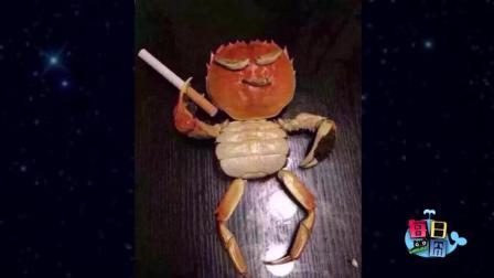 原来螃蟹是这样吃东西的, 感觉自己活得都没小螃