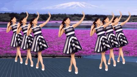 玫香广场舞 真的好想你 老歌新跳更好看的广场舞视频