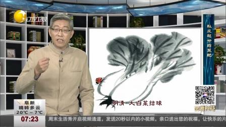 温故知新:秋风起兮白菜肥 第一时间 181021