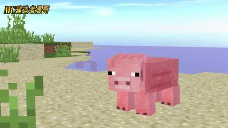我的世界动画: 种的庄稼被猪偷吃了, 大家都经历过的情景, 最后史蒂夫