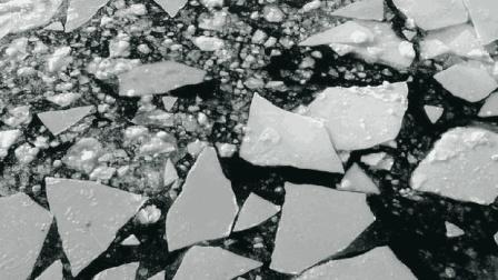 北极又出事了! 海冰这种变化让人心惊, NASA: 人类要倒霉!