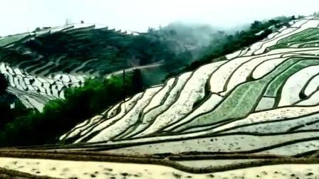 盘点中国10大最美梯田 最原始的自然风光  你去过