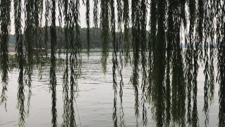 西湖风景区