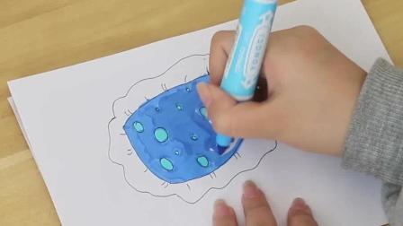 简笔画: 漂亮的小枕头大家喜欢嘛? 跟幼教小姐姐一起来看看是怎么画的吧, 两分钟就搞定