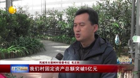 大梨树:干出一片新天地 辽宁新闻 20181128