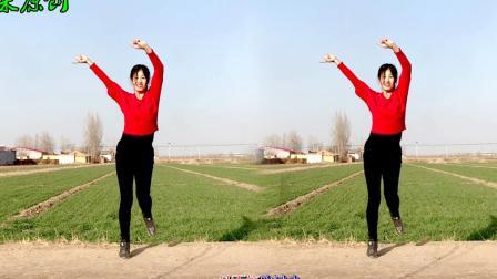 点击观看《阿采广场舞 无奈的思绪 小麦地里面的抖胯舞韵味十足 更好看》