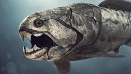 曾主导地球主导地位的鱼, 咬合力惊人, 当时的海洋霸主