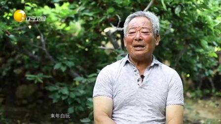 映·像40:樱桃种植第一人——郭成满 第一时间 20181214