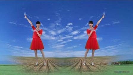 阳光溪柳广场舞 初学者一看就就会的24步中老年健身舞视频